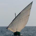 La Mar d'Amics parle des Naut'Antics 2010