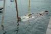 Danièla sortie de l'eau 31-5-14 (14)